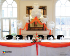 Cloud Nine Balloon Arches